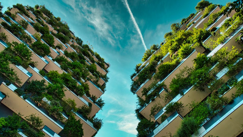 Balazs Sebok / Shutterstock.com